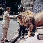 The Conquering Lion