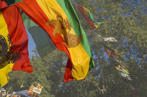 International Rastafari Protest suspended