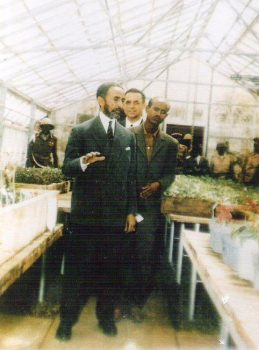 Rastafari Agricultural Development in Jamaica